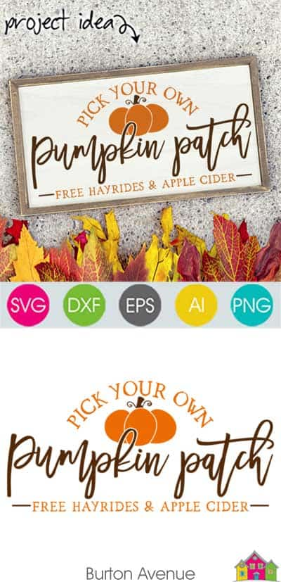Pumpkin Patch SVG File